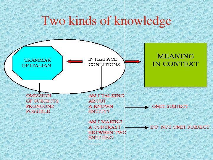 Twokindsofknowledge. INTERFACE CONDITIONS OMISSIONAMITALKING OFSUBJECTSABOUT PRONOUNSAKNOWNOMITSUBJECT POSSIBLEENTITY? AMIMAKING ACONTRASTDONOTOMITSUBJECT BETWEENTWO ENTITIES? ……. . MEANING INCONTEXT GRAMMAR