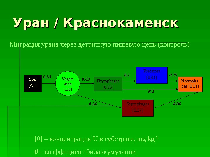 Миграция урана через детритную пищевую цепь (контроль)  Soil [4. 5] Phytophages [0. 05] Predators [0.