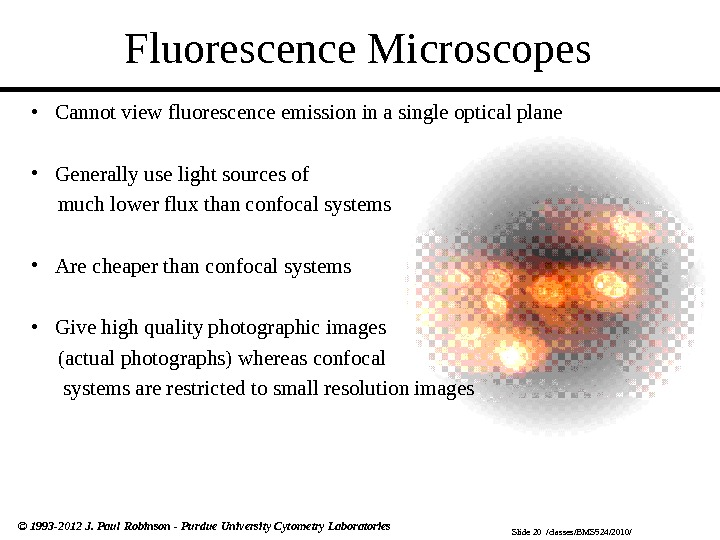 Slide 20  /classes/BMS 524/2010/© 1993 -2012 J. Paul Robinson - Purdue University Cytometry Laboratories Fluorescence
