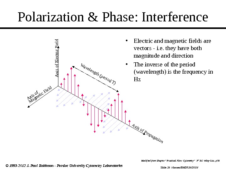 Slide 24  /classes/BMS 524/2010/© 1993 -2012 J. Paul Robinson - Purdue University Cytometry Laboratories Polarization