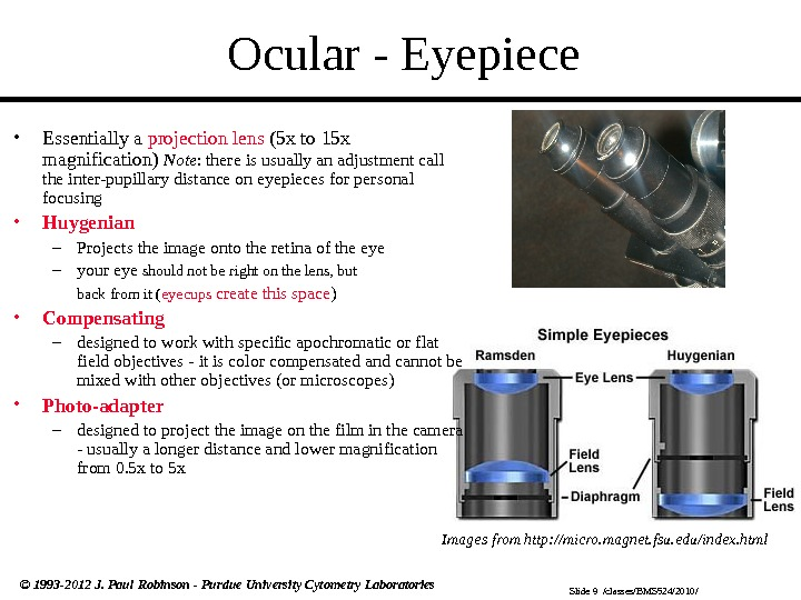 Slide 9  /classes/BMS 524/2010/© 1993 -2012 J. Paul Robinson - Purdue University Cytometry Laboratories Ocular