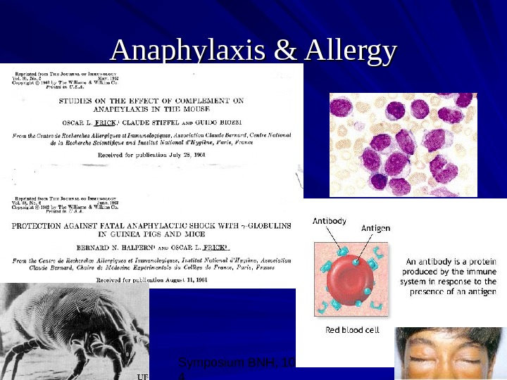 Symposium BNH, 10/08/0 4 19 Anaphylaxis & Allergy