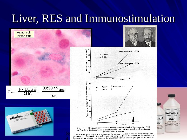 Symposium BNH, 10/08/0 4 25 Liver, RES and Immunostimulation