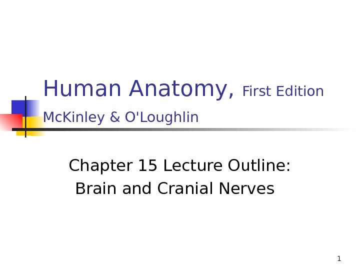 1 Human Anatomy,  First Edition Mc. Kinley & O'Loughlin  Chapter 15 Lecture Outline: