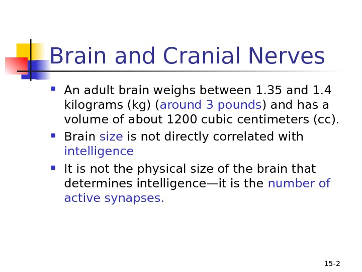 15 - 2 Brain and Cranial Nerves An adult brain weighs between 1. 35 and 1.