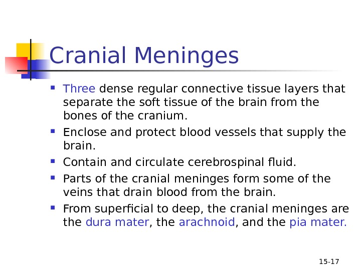 15 - 17 Cranial Meninges Three dense regular connective tissue layers that separate the soft tissue
