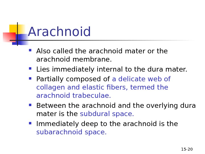 15 - 20 Arachnoid  Also called the arachnoid mater or the arachnoid membrane.  Lies