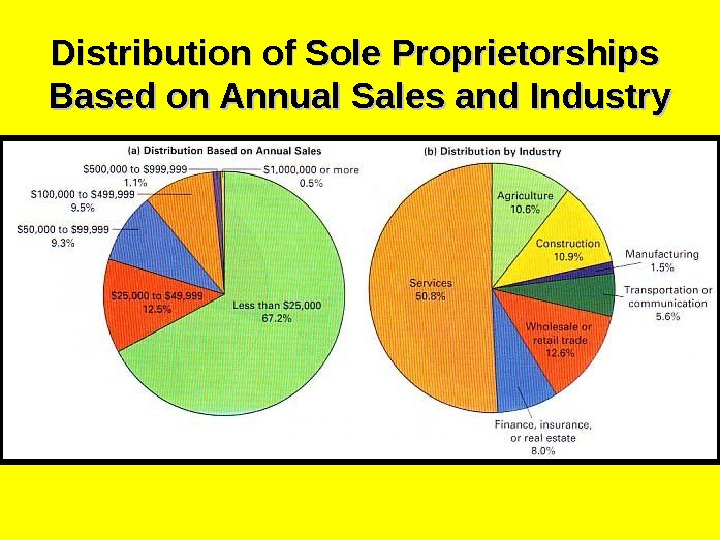 Distribution of Sole Proprietorships Based on Annual Sales and Industry