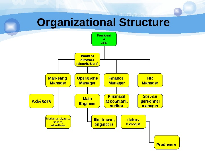 Organizational Structure President  & CEO Marketing Manager Operations Manager Finance Manager HR Manager Main Engineer
