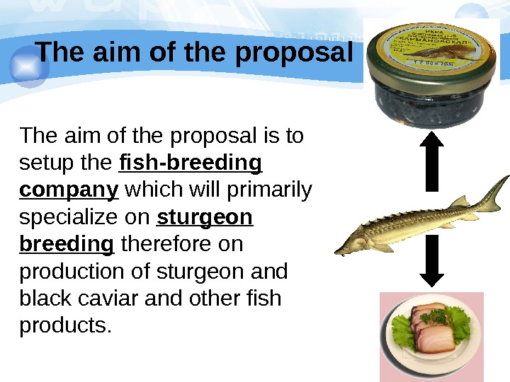The aim of the proposal is to setup the fish-breeding company which will primarily specialize on