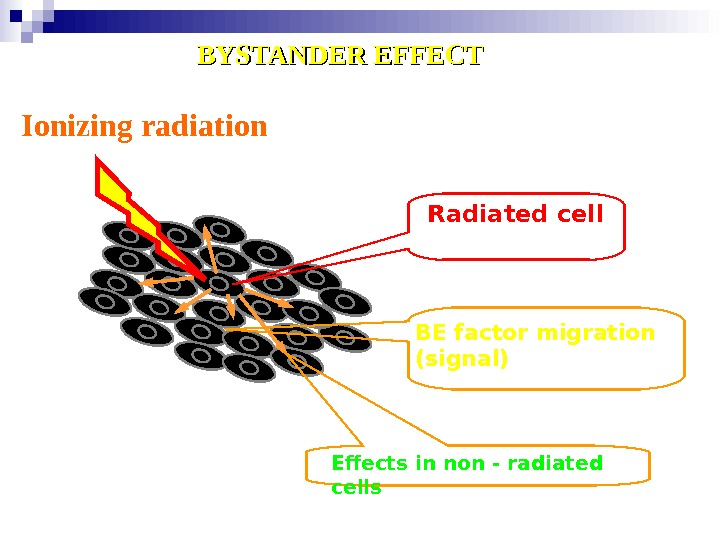 Ionizing radiation Radiated cell BE factor migration  ( signal ) Effects in non - radiated