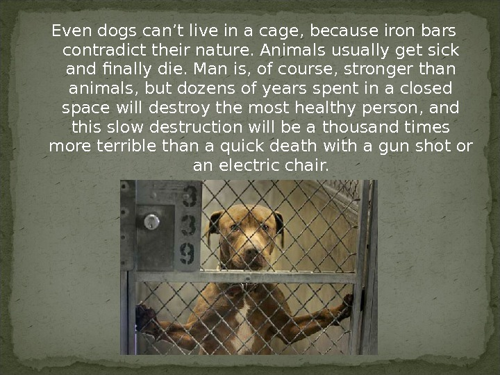 Even dogs can't live in a cage, because iron bars contradict their nature. Animals usually get