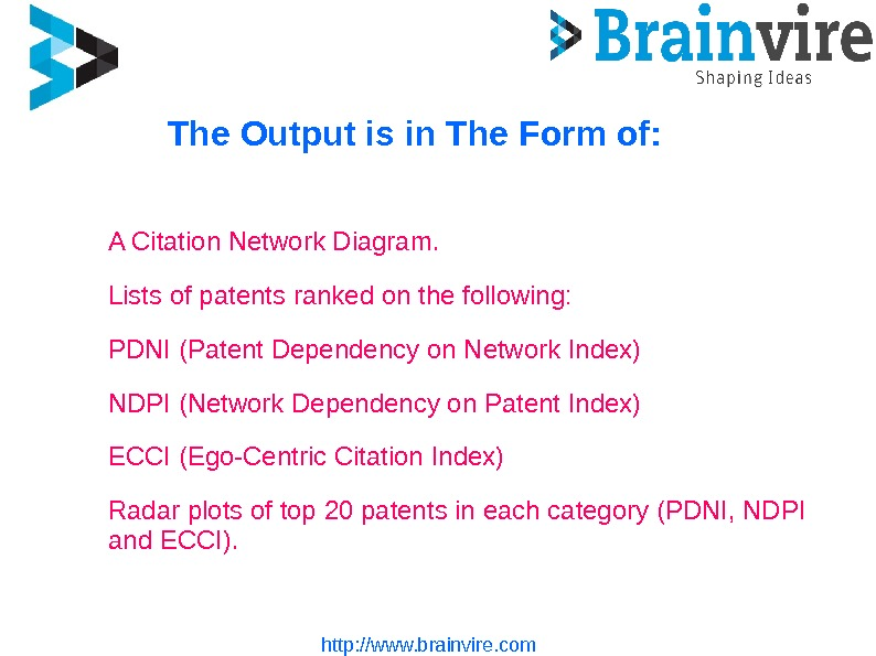 http: //www. brainvire. com. The Output is in The Form of: A Citation Network Diagram.