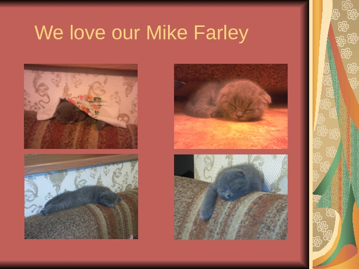 We love our Mike Farley