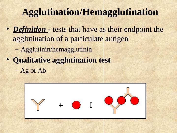 Agglutination/Hemagglutination • Definition - tests that have as their endpoint the agglutination of a