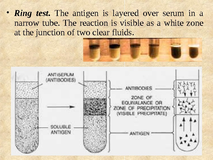 • Ring test.  The antigen is layered over serum in a narrow tube.