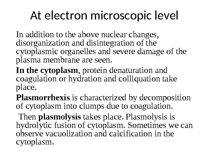 At electron microscopic level I n addition to the above nuclear changes,  disorganization and disintegration