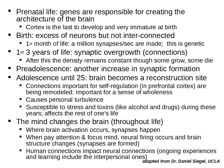 Prenatal life: genes are responsible for creating the architecture of the brain Cortex is the