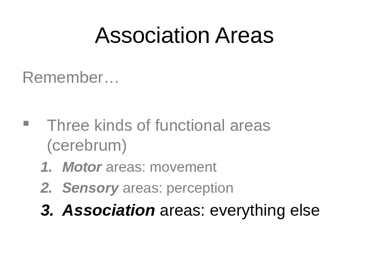 Association Areas Remember… Three kinds of functional areas (cerebrum) 1. Motor areas: movement 2. Sensory areas: