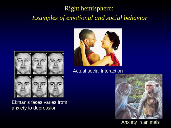 Actual social interaction Ekman's faces varies from anxiety to depression Right hemisphere:  Examples