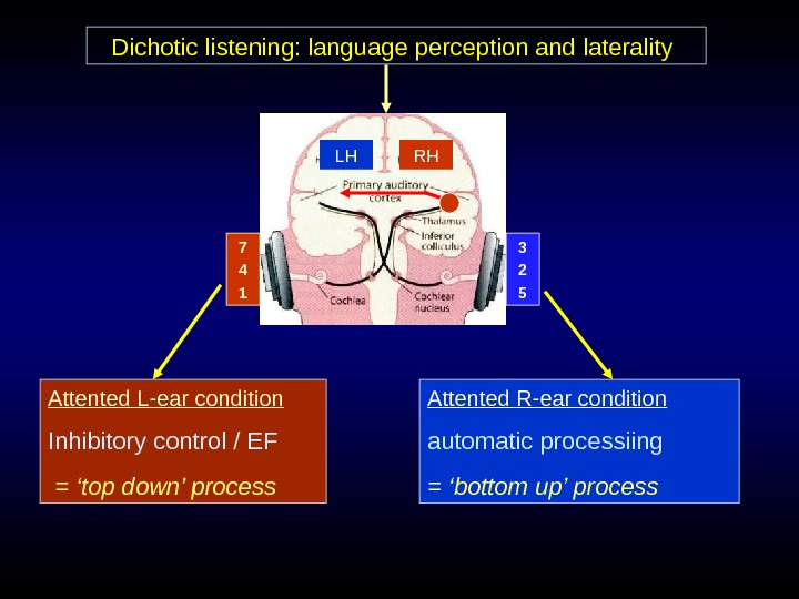 Dichotic listening: language perception and laterality  Attented R-ear condition automatic processiing = 'bottom