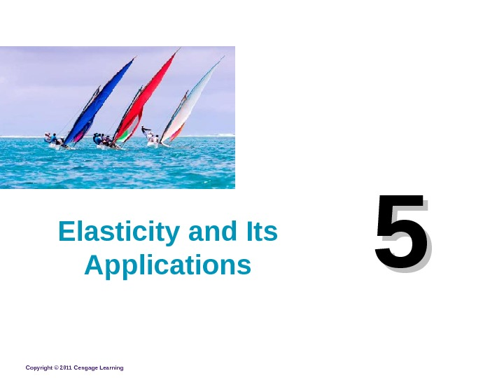 Copyright © 2011 Cengage Learning 55 Elasticity and Its Applications