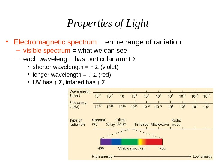 Properties of Light • Electromagnetic spectrum = entire range of radiation – visible spectrum =