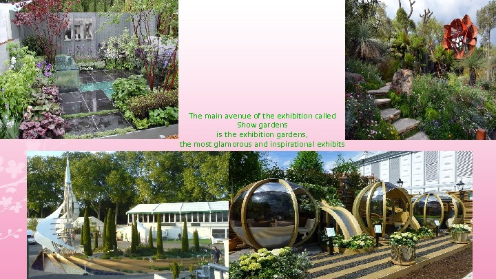 The main avenue of the exhibition called Show gardens is the exhibition gardens,  the most