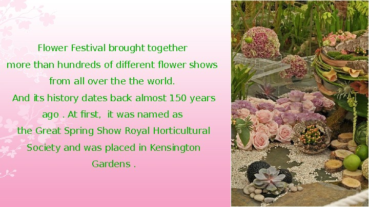 Flower Festival brought together more than hundreds of different flower shows from all over the world.