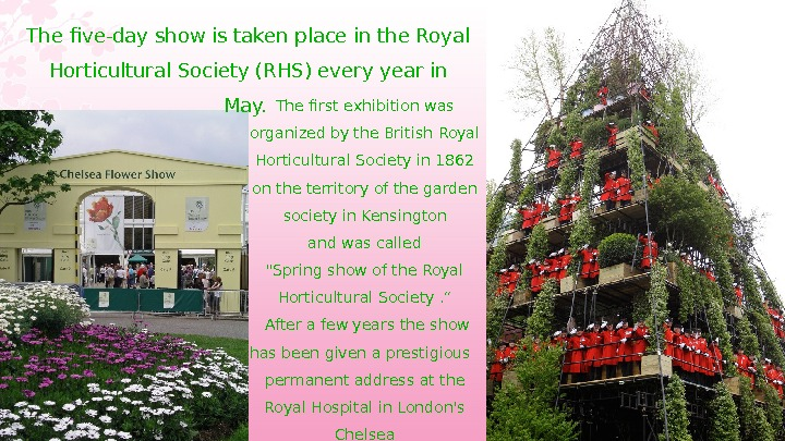 The five-day show is taken place in the Royal Horticultural Society (RHS) every year in May.
