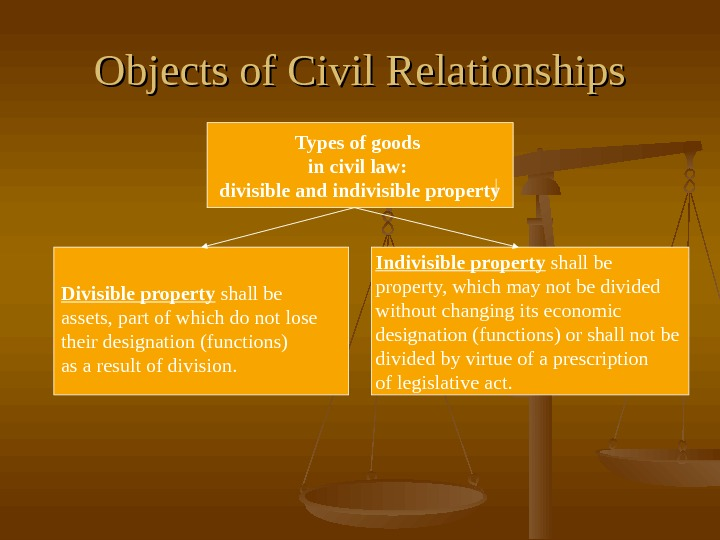 Objects of Civil Relationships Types of goods in civil law:  divisible and indivisible
