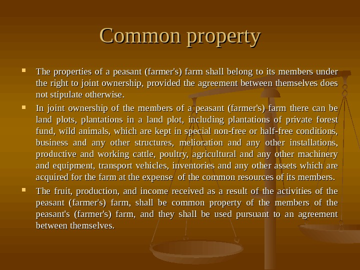 Common property The properties of a peasant (farmer's) farm shall belong to its members