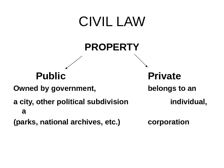 CIVIL LAW PROPERTY Public Private Owned by government,  belongs to an a city, other political
