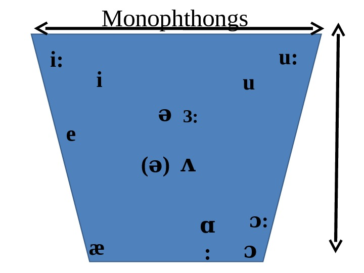 ii: u u: ə З: ʌe æ ɑ : ɔ( ) əMonophthongs
