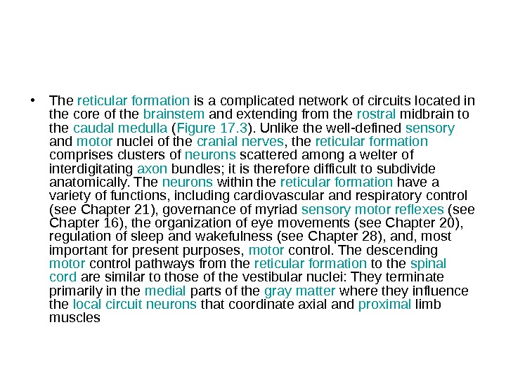 • The reticular  formation is a complicated network of circuits located in the