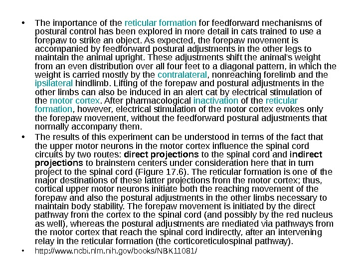 • The importance of the reticular  formation for feedforward mechanisms of postural control