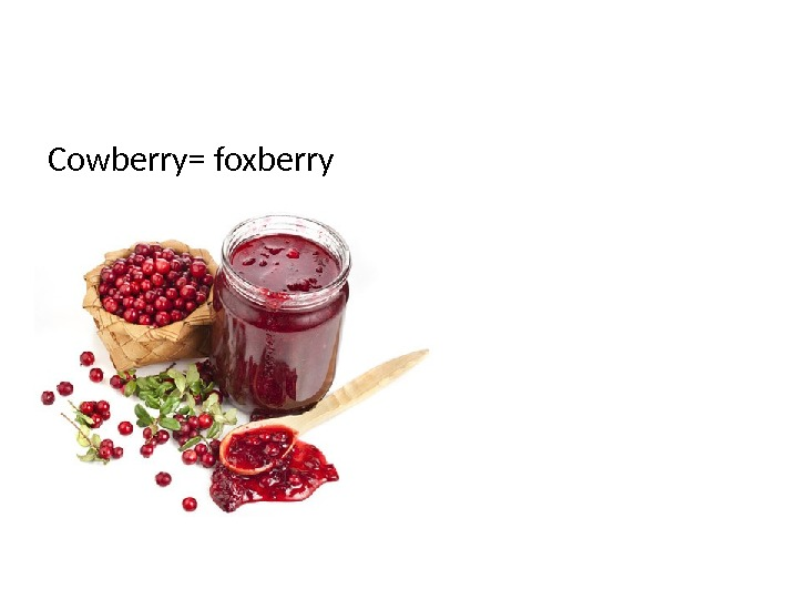 Cowberry= foxberry