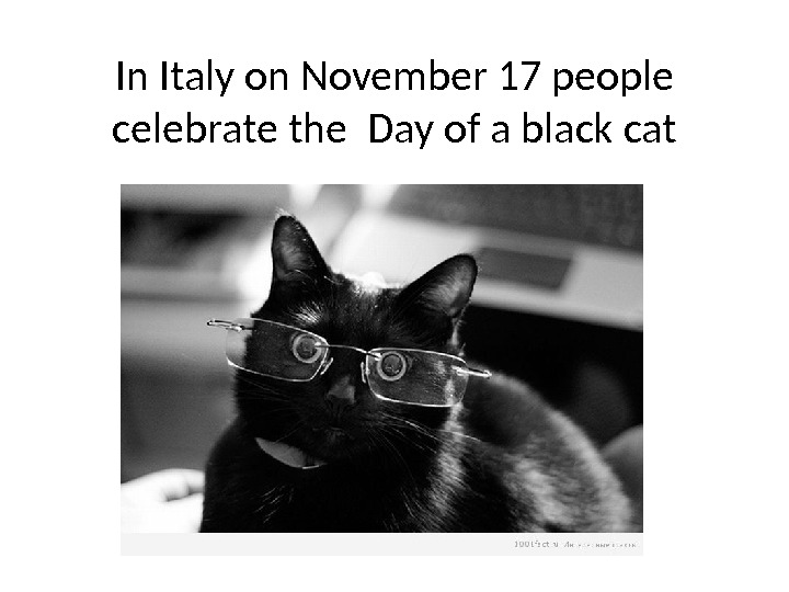 In Italy on November 17 people celebrate the Day of a black cat