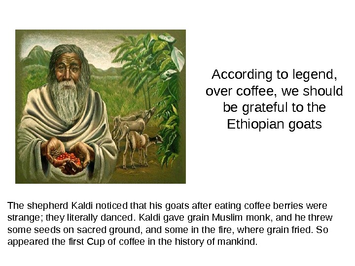 According to legend,  over coffee, we should be grateful to the Ethiopian goats The shepherd