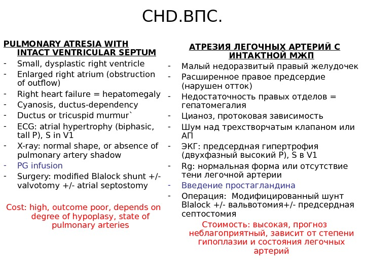 CHD. ВПС. PULMONARY ATRESIA WITH INTACT VENTRICULAR SEPTUM - Small, dysplastic right ventricle - Enlarged