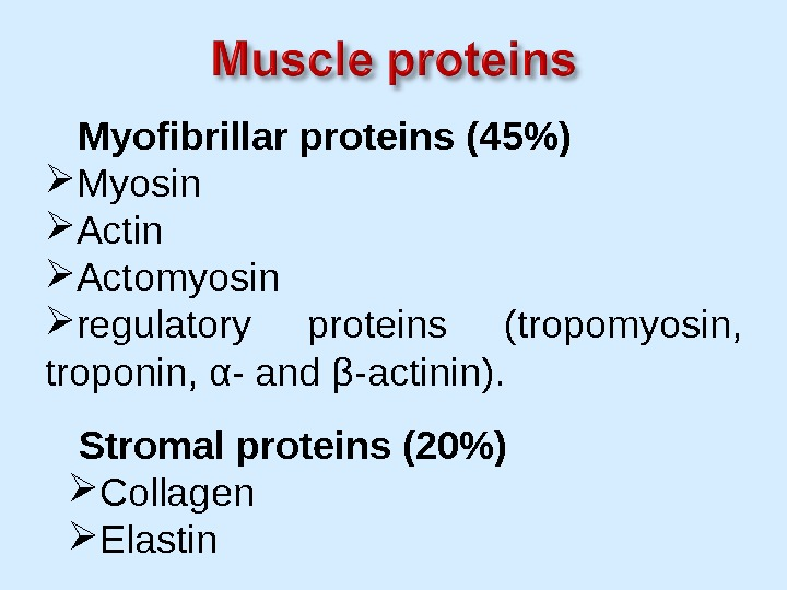 Myofibrillar proteins (45) Myosin Actomyosin regulatory proteins (tropomyosin,  troponin, α- and β-actinin).