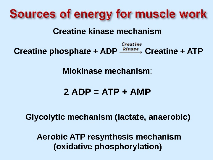 Creatine kinase mechanism  Creatine phosphate + ADP  Creatine + ATP Miokinase mechanism : 2