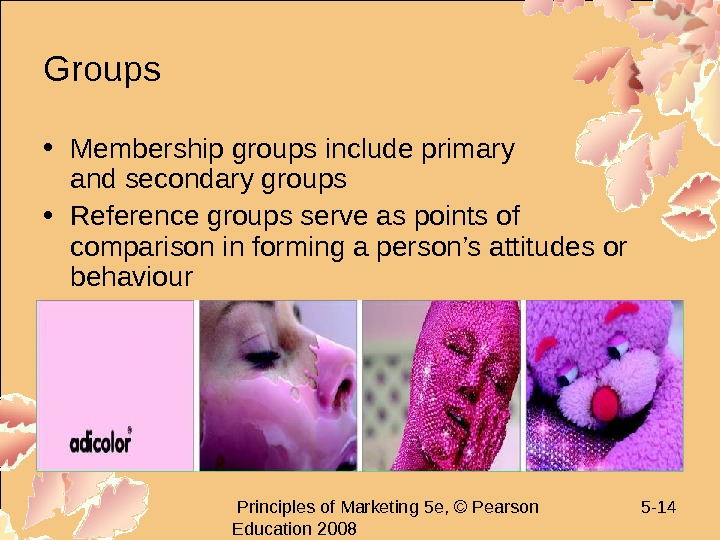 Principles of Marketing 5 e, © Pearson Education 2008 5 - 14 Groups •
