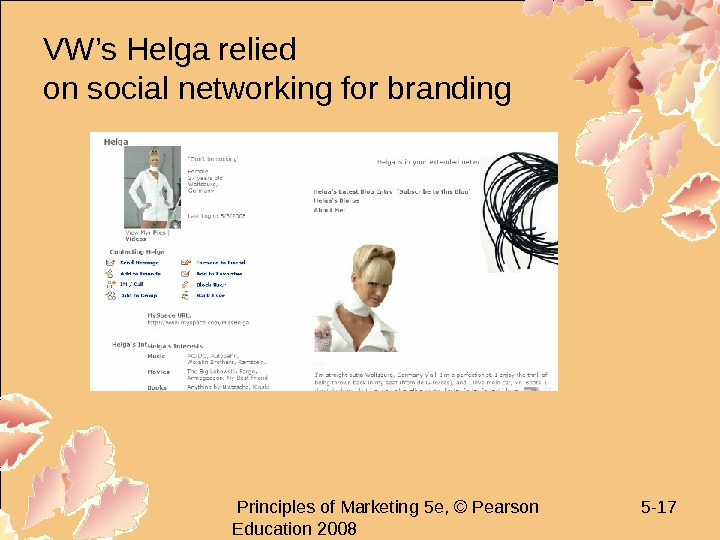 Principles of Marketing 5 e, © Pearson Education 2008 5 - 17 VW's Helga