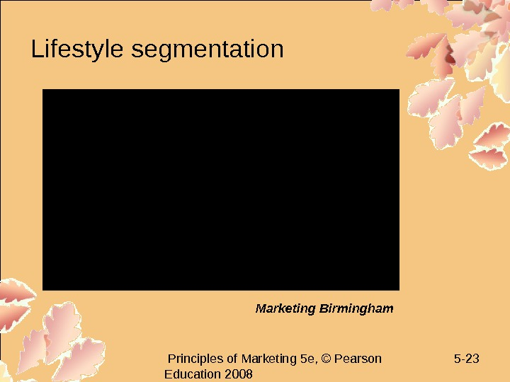Principles of Marketing 5 e, © Pearson Education 2008 5 - 23 Lifestyle segmentation