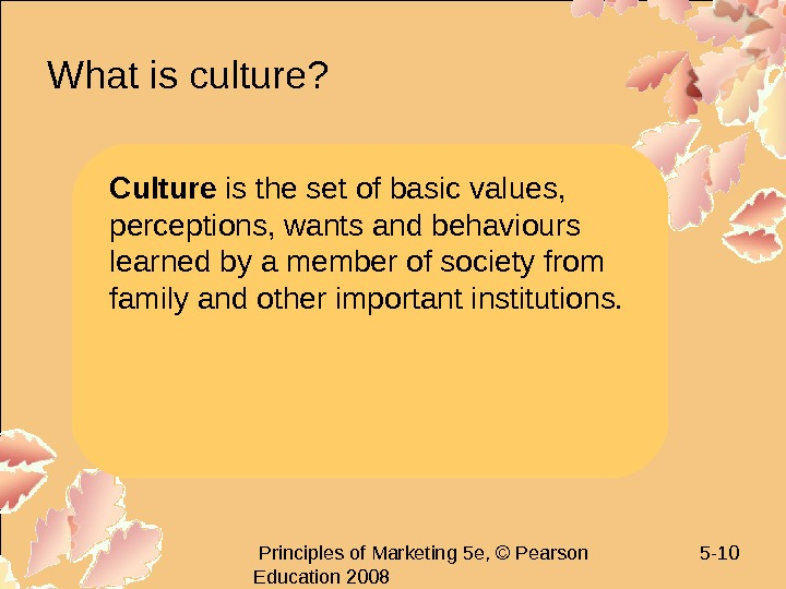 Principles of Marketing 5 e, © Pearson Education 2008 5 - 10 What is