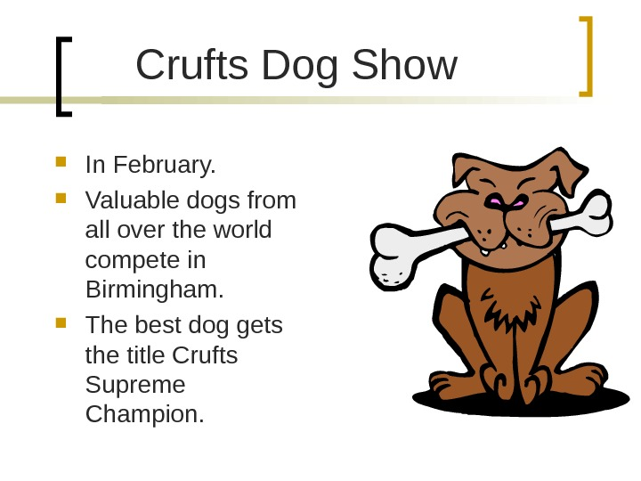 Crufts Dog Show In February.  Valuable dogs from all over the world compete in Birmingham.