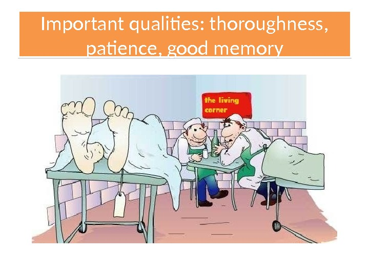Important qualities: thoroughness,  patience, good memory 01 1208