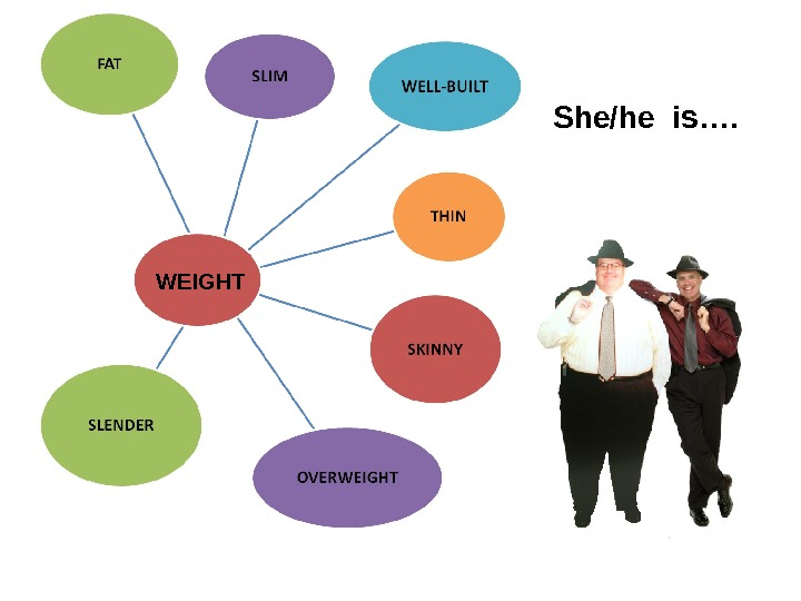 WEIGHT She/he is….