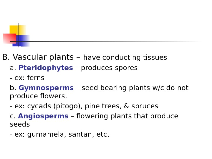 B. Vascular plants –  have conducting tissues a.  Pteridophytes – produces spores - ex: